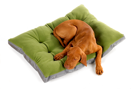 Dogs cushions
